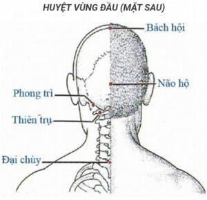 Các huyệt vị vùng đầu