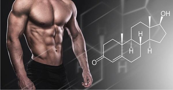 DHT có vai trò quan trọng trong việc hình thành các đặc điểm giới tính